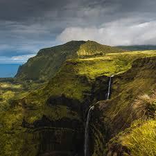 Zola das Zebra
