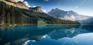сервис ингалятора ремонт